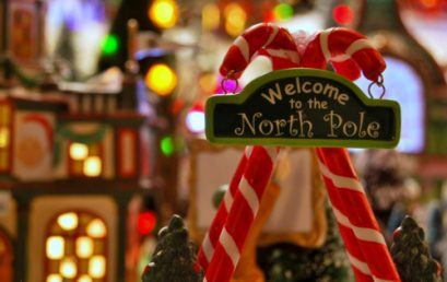Leadership Lessons from the North Pole